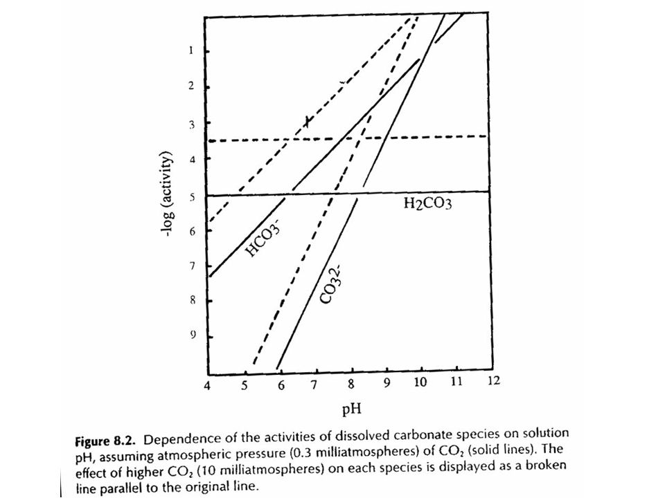 SUELOS ALCALINOS CÁLCICOS Condiciones de suelo para que se presenten clorosis férricas en plantas sensibles
