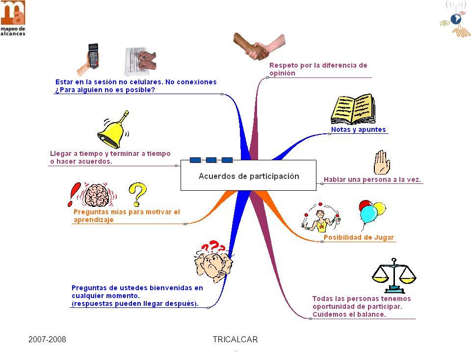 2007-2008TRICALCAR. DISEÑO INTENCIONAL ¿QUIENES CONFORMAN EL PROGRAMA? Diseño Intencional Etapa 1