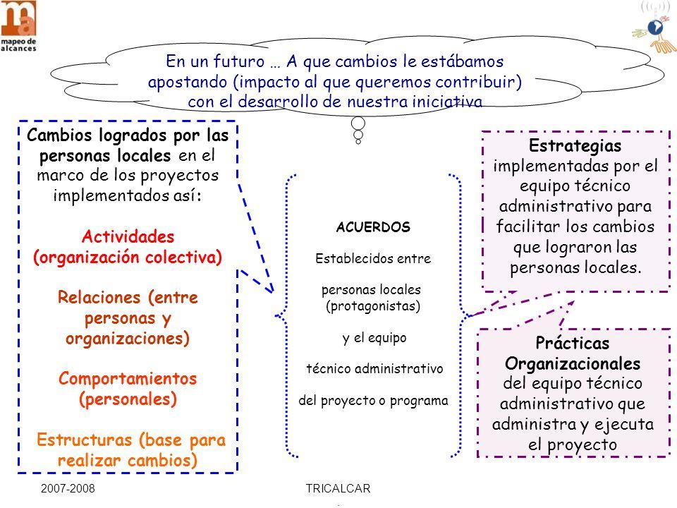 2007-2008TRICALCAR.Aproximación estratégica una vez evaluada la Situación de Interés..