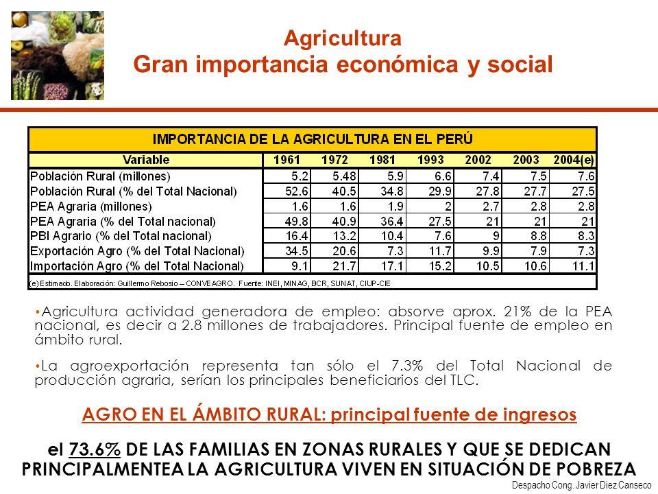 Agricultura Gran importancia económica y social Agricultura actividad generadora de empleo: absorve aprox.