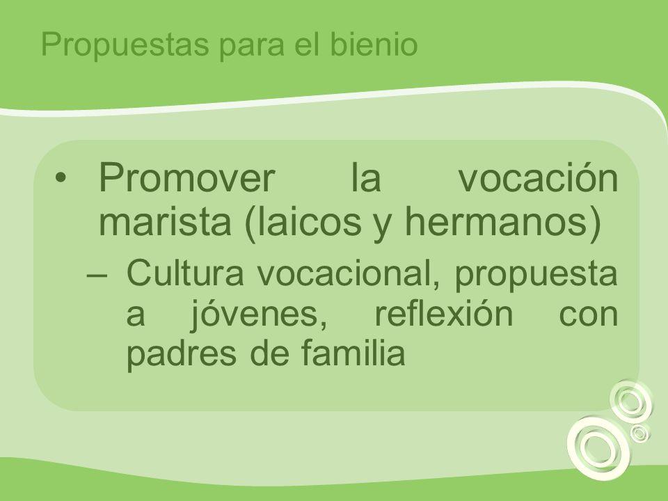 Promover la vocación marista (laicos y hermanos) –Cultura vocacional, propuesta a jóvenes, reflexión con padres de familia Propuestas para el bienio