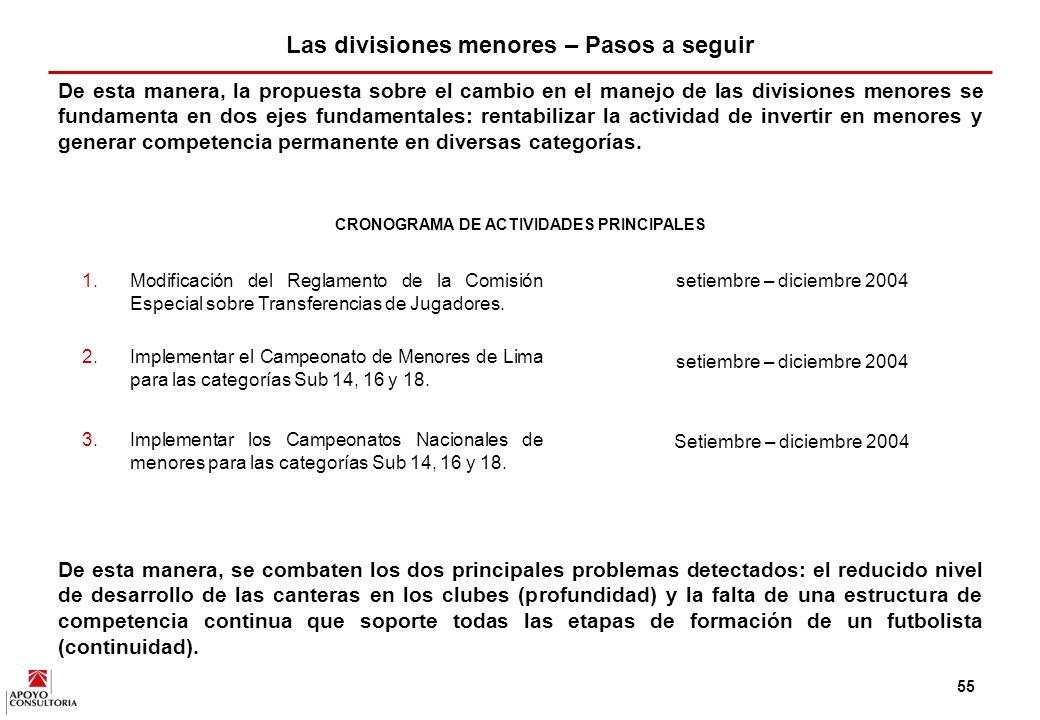 54 De esta manera, se recomienda que los clubes incorporen mecanismos profesionales para la gestión de sus divisiones menores y que el Reglamento de la Comisión Especial sobre Transferencias de Jugadores sea lo más transparente posible y esté basado en el modelo argentino.
