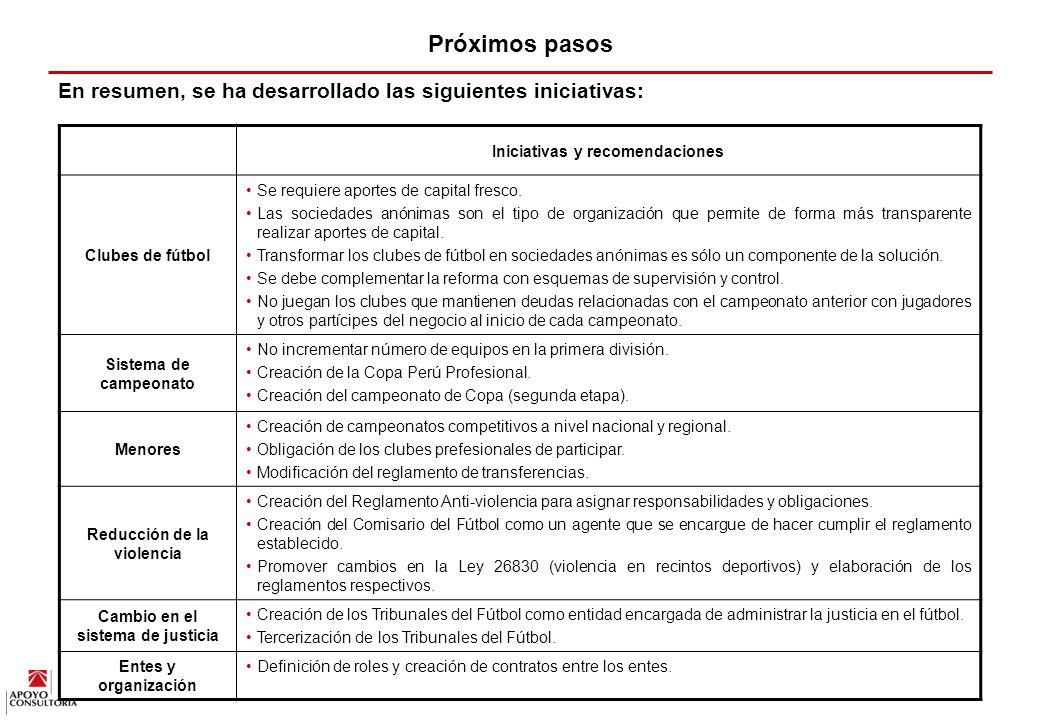 95 VIII. PROXIMOS PASOS