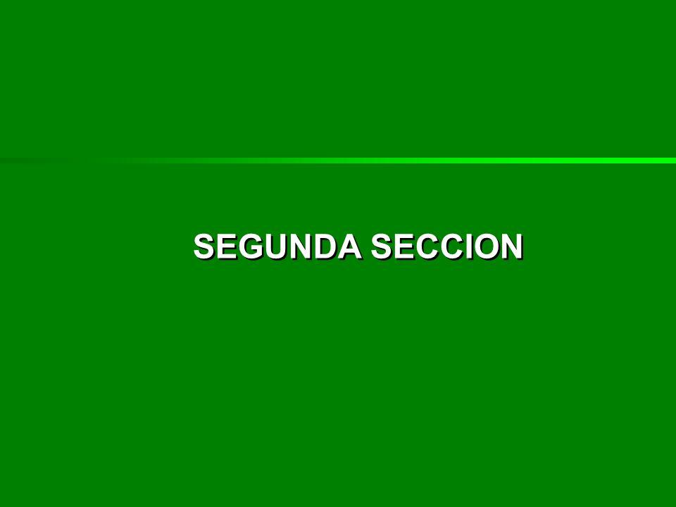 SEGUNDA SECCION