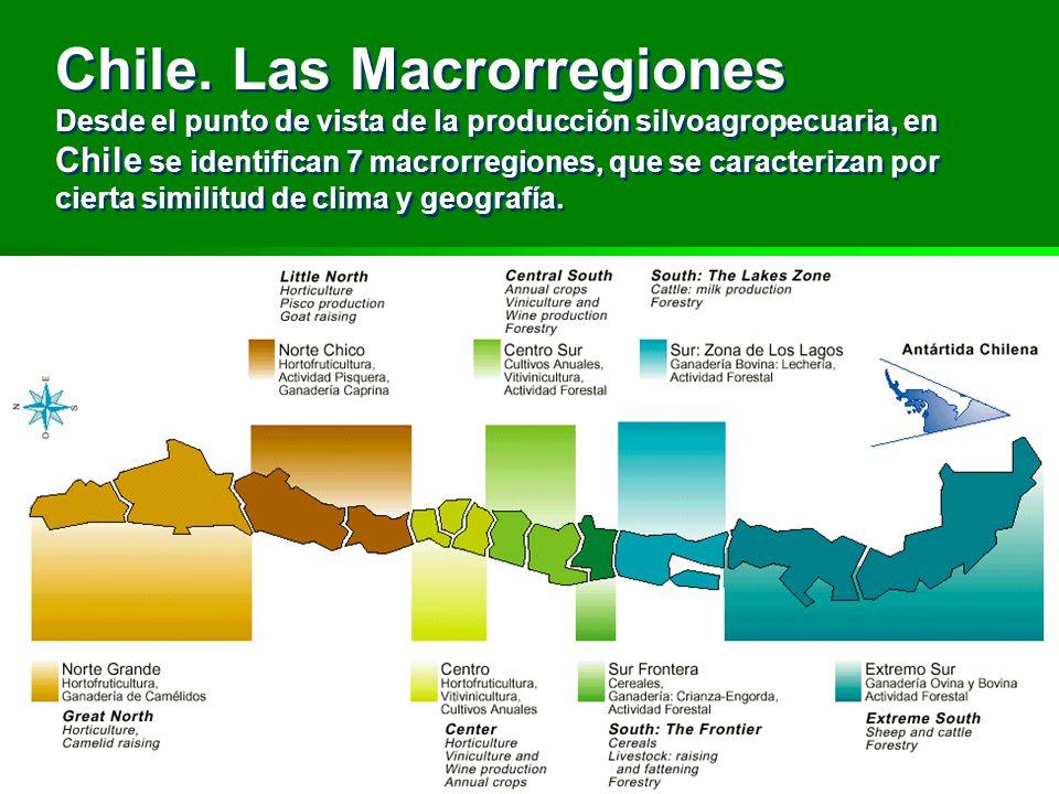 Chile. Las Macrorregiones Desde el punto de vista de la producción silvoagropecuaria, en Chile se identifican 7 macrorregiones, que se caracterizan po