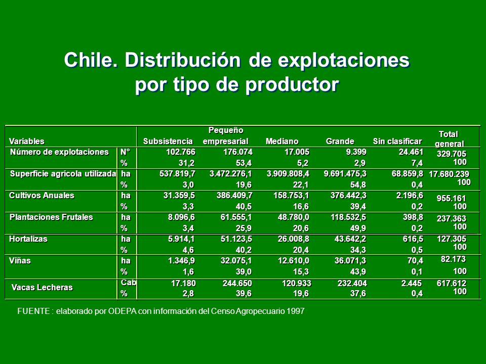 Chile. Distribución de explotaciones por tipo de productor Chile. Distribución de explotaciones por tipo de productor Subsistencia Pequeño empresarial