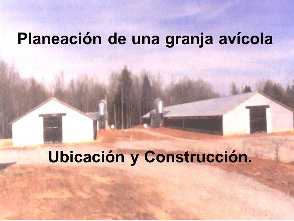 Planeación de una granja avícola Ubicación y Construcción.