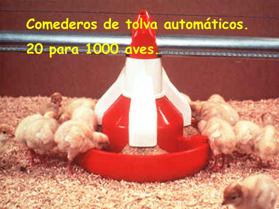 Comederos de tolva automáticos. 20 para 1000 aves.