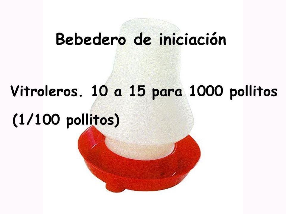 Bebedero de iniciación Vitroleros. 10 a 15 para 1000 pollitos (1/100 pollitos)