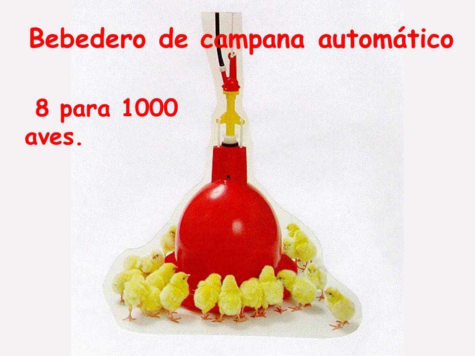 Bebedero de campana automático 8 para 1000 aves.
