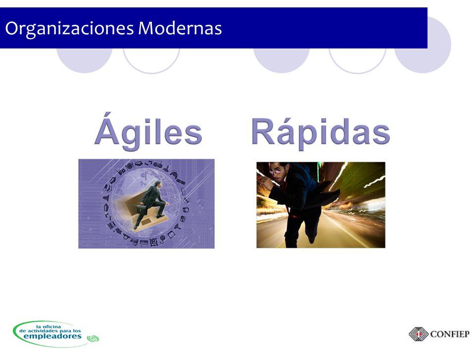 Organizaciones Modernas