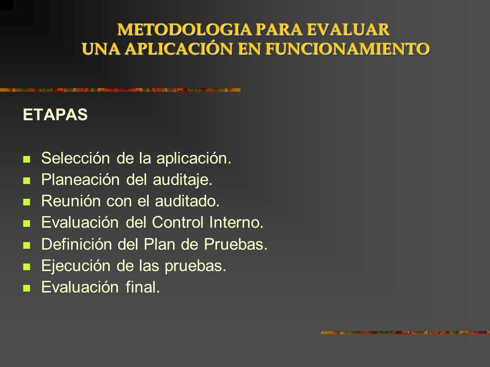 ETAPAS Selección de la aplicación. Planeación del auditaje. Reunión con el auditado. Evaluación del Control Interno. Definición del Plan de Pruebas. E