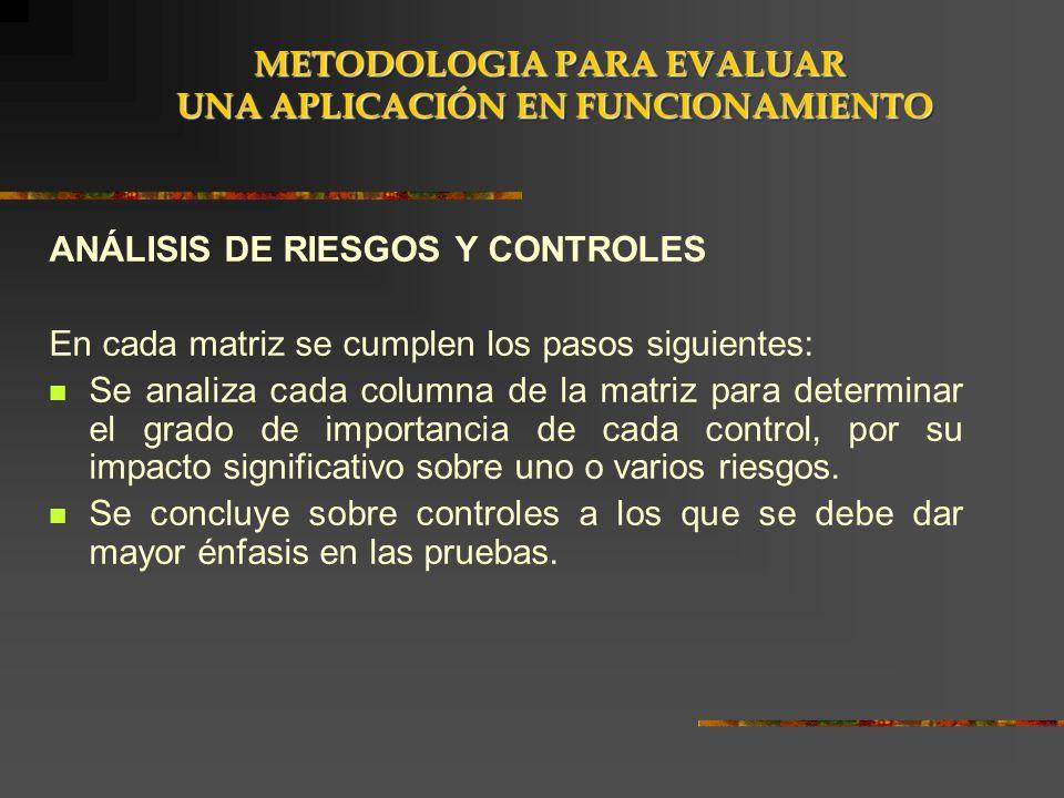 ANÁLISIS DE RIESGOS Y CONTROLES En cada matriz se cumplen los pasos siguientes: Se analiza cada columna de la matriz para determinar el grado de impor