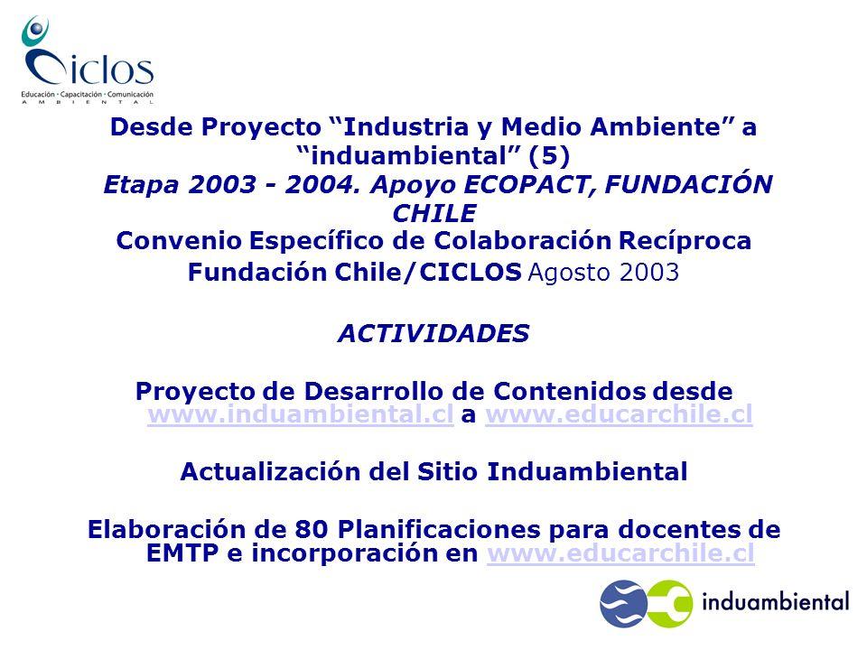 Desde Proyecto Industria y Medio Ambiente a induambiental (5) Etapa 2003 - 2004.