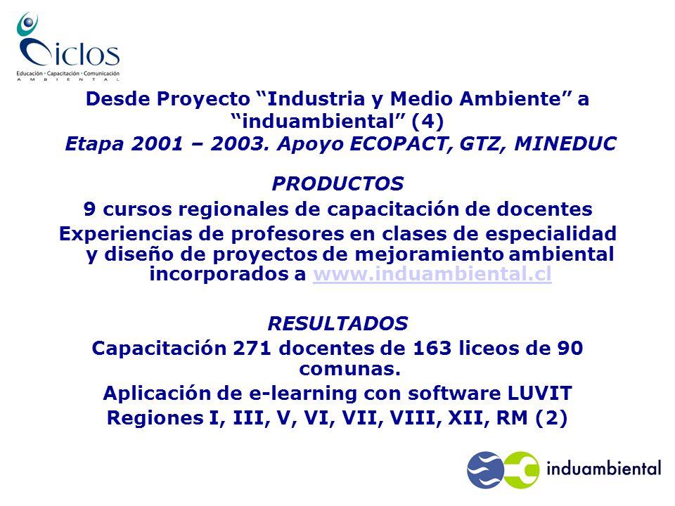 Desde Proyecto Industria y Medio Ambiente a induambiental (4) Etapa 2001 – 2003.