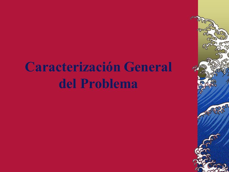 Caracterización General del Problema