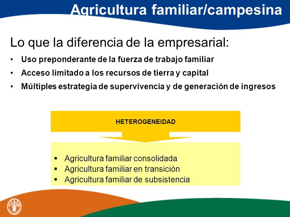 Agricultura familiar/campesina Lo que la diferencia de la empresarial: Uso preponderante de la fuerza de trabajo familiar Acceso limitado a los recurs