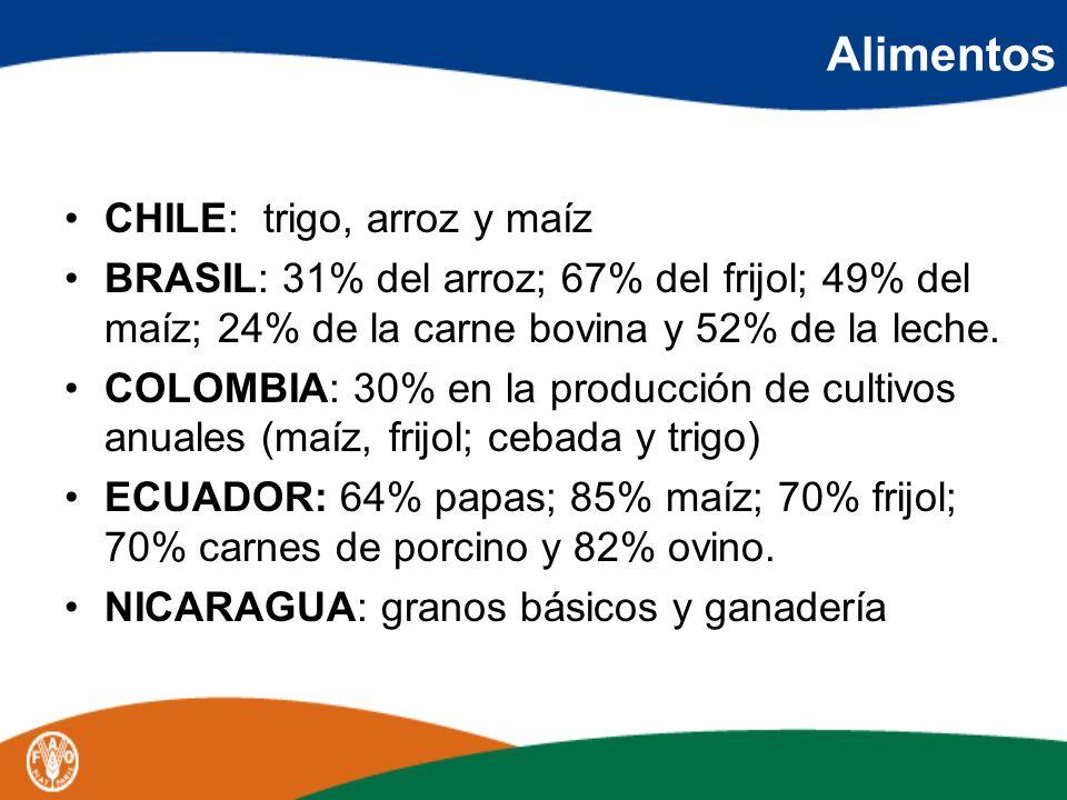 Alimentos CHILE: trigo, arroz y maíz BRASIL: 31% del arroz; 67% del frijol; 49% del maíz; 24% de la carne bovina y 52% de la leche. COLOMBIA: 30% en l