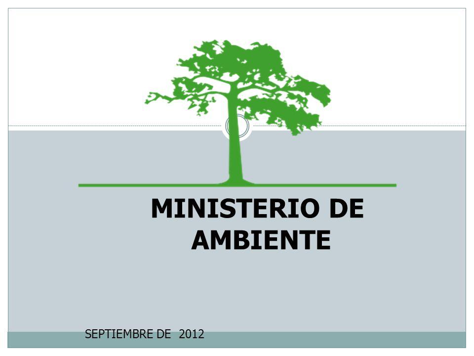 MINISTERIO DE AMBIENTE SEPTIEMBRE DE 2012