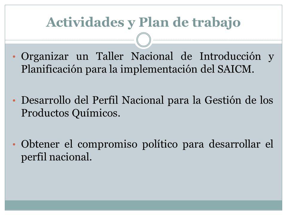 Actividades y Plan de trabajo Organizar un Taller Nacional de Introducción y Planificación para la implementación del SAICM. Desarrollo del Perfil Nac