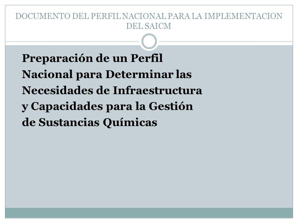 DOCUMENTO DEL PERFIL NACIONAL PARA LA IMPLEMENTACION DEL SAICM Preparación de un Perfil Nacional para Determinar las Necesidades de Infraestructura y