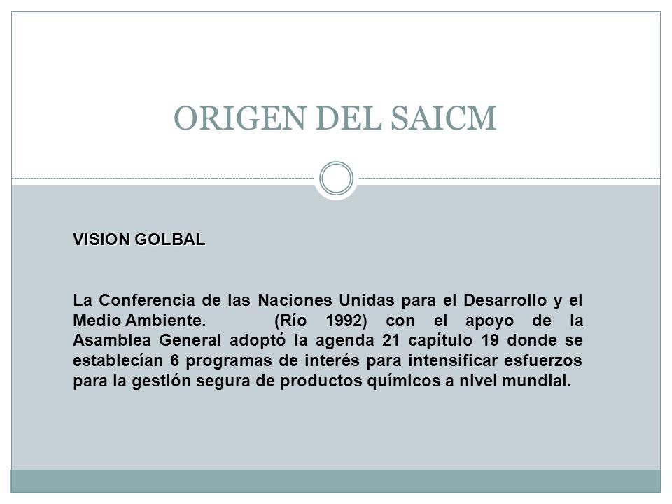 ORIGEN DEL SAICM VISION GOLBAL La Conferencia de las Naciones Unidas para el Desarrollo y el Medio Ambiente. (Río 1992) con el apoyo de la Asamblea Ge