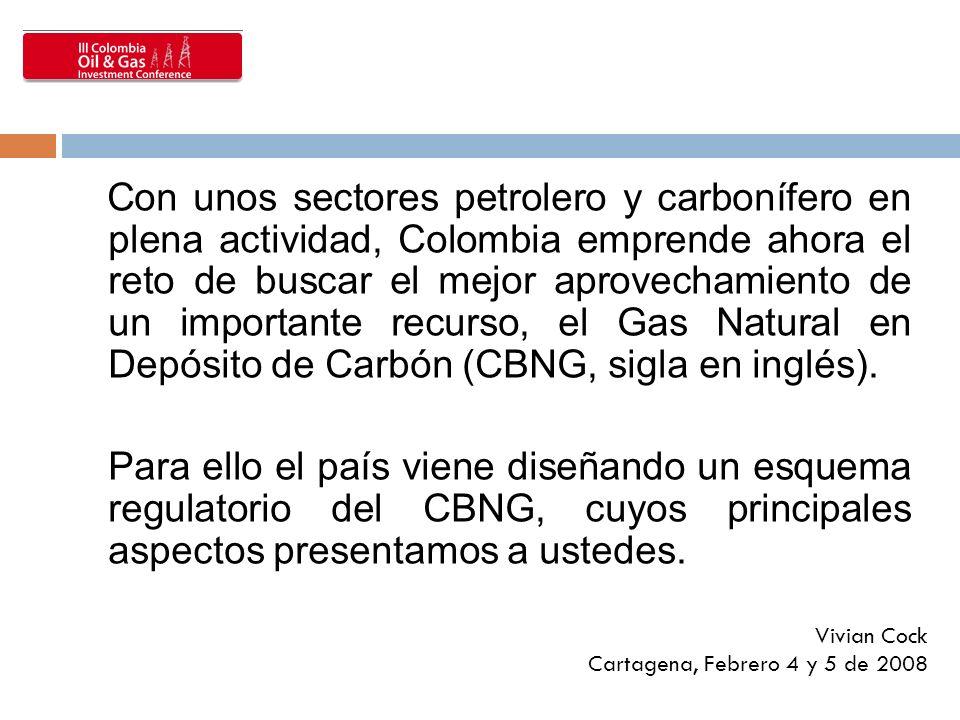 Con unos sectores petrolero y carbonífero en plena actividad, Colombia emprende ahora el reto de buscar el mejor aprovechamiento de un importante recurso, el Gas Natural en Depósito de Carbón (CBNG, sigla en inglés).