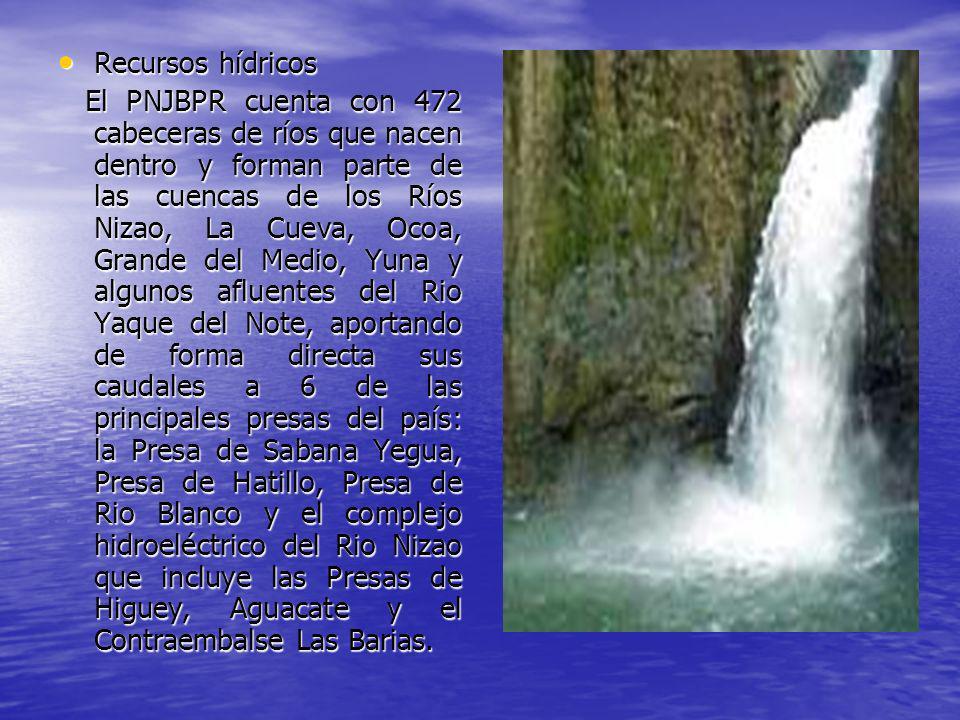 Recursos hídricos Recursos hídricos El PNJBPR cuenta con 472 cabeceras de ríos que nacen dentro y forman parte de las cuencas de los Ríos Nizao, La Cu