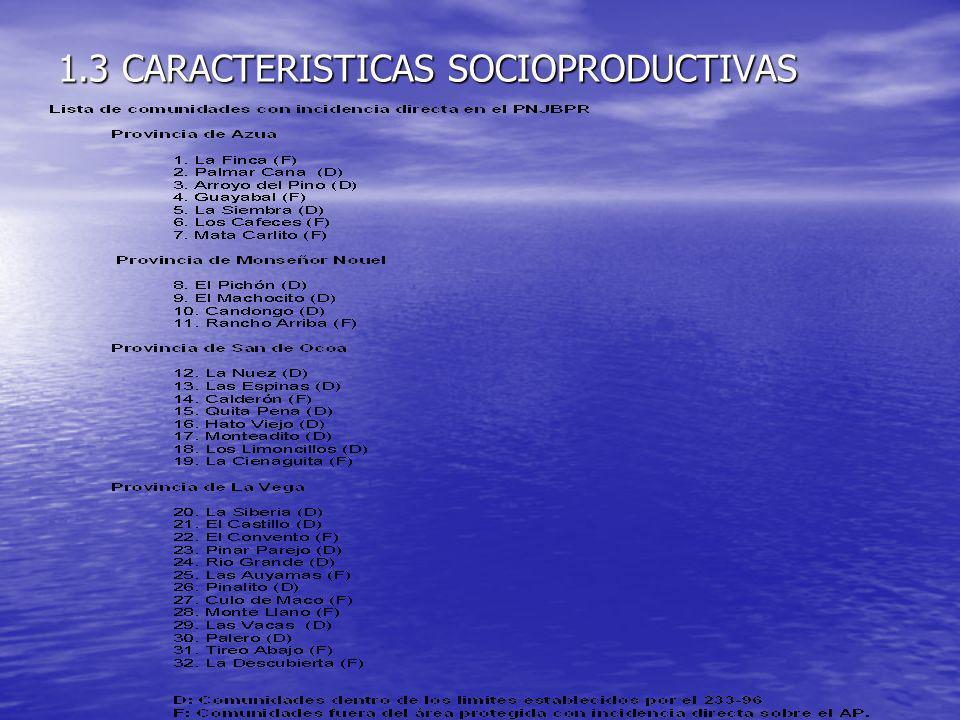 1.3 CARACTERISTICAS SOCIOPRODUCTIVAS