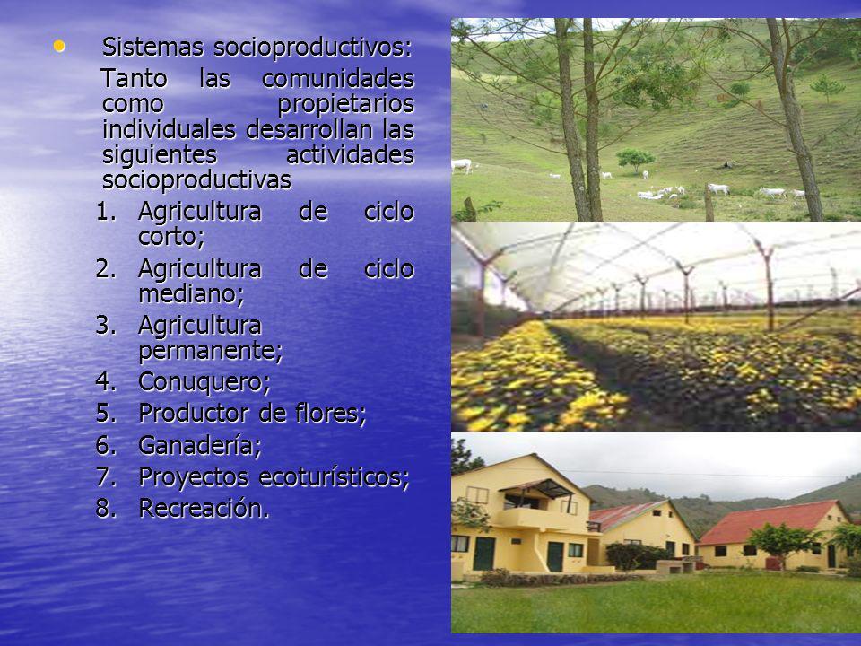 Sistemas socioproductivos: Sistemas socioproductivos: Tanto las comunidades como propietarios individuales desarrollan las siguientes actividades soci