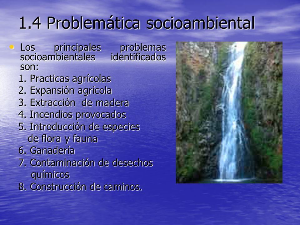 1.4 Problemática socioambiental Los principales problemas socioambientales identificados son: Los principales problemas socioambientales identificados
