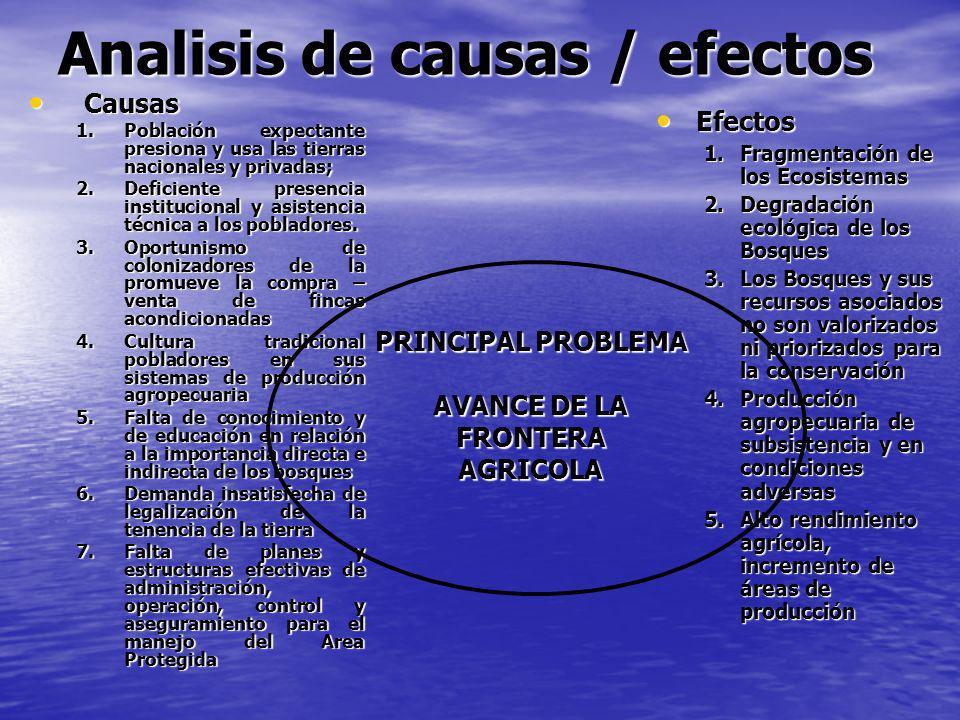 Analisis de causas / efectos Causas Causas 1.Población expectante presiona y usa las tierras nacionales y privadas; 2.Deficiente presencia institucion