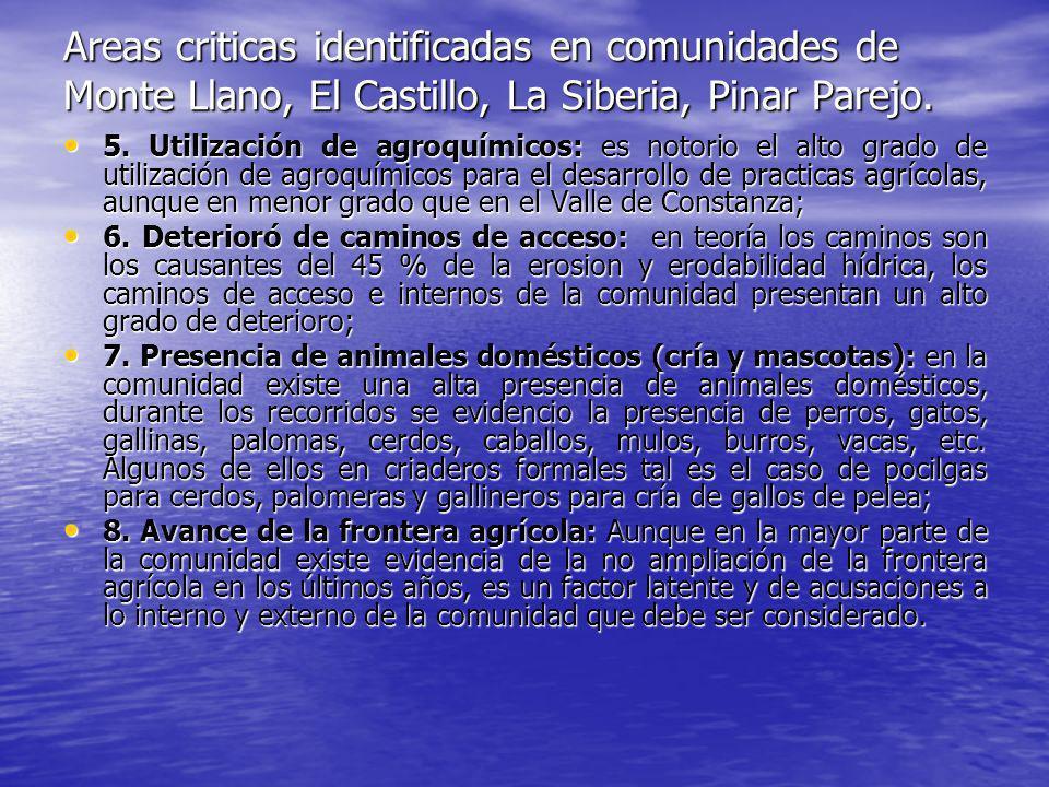 Areas criticas identificadas en comunidades de Monte Llano, El Castillo, La Siberia, Pinar Parejo. 5. Utilización de agroquímicos: es notorio el alto