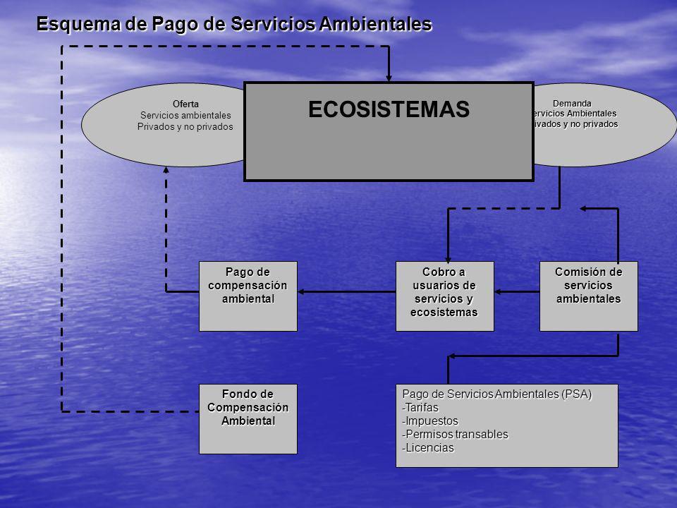 Oferta Servicios ambientales Privados y no privadosDemanda Servicios Ambientales Privados y no privados ECOSISTEMAS Comisión de servicios ambientales