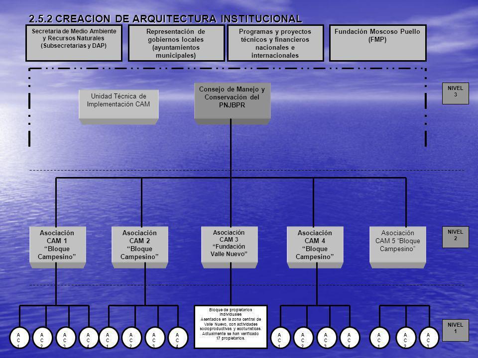 2.5.2 CREACION DE ARQUITECTURA INSTITUCIONAL Consejo de Manejo y Conservación del PNJBPR Asociación CAM 1 Bloque Campesino Asociación CAM 2 Bloque Cam