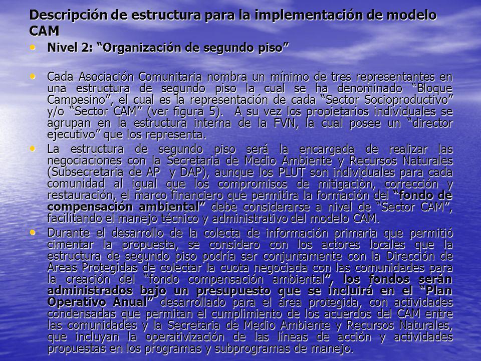 Descripción de estructura para la implementación de modelo CAM Nivel 2: Organización de segundo piso Nivel 2: Organización de segundo piso Cada Asocia