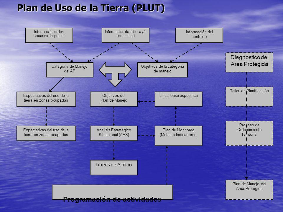 Plan de Uso de la Tierra (PLUT) Información de los Usuarios del predio Información de la finca y/o comunidad Información del contexto Categoria de Man