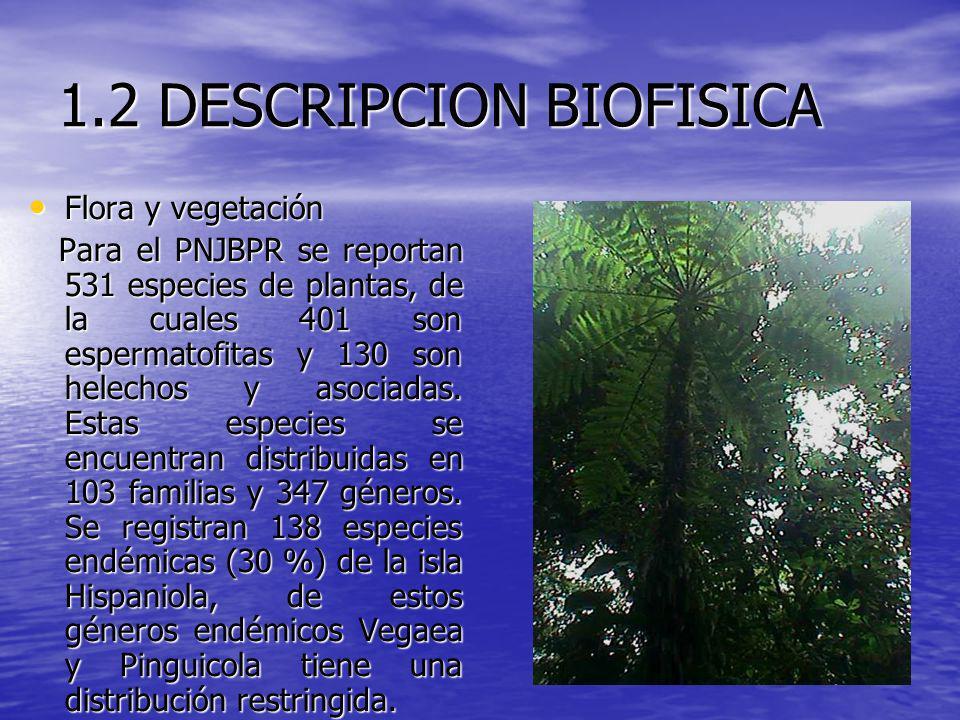 1.2 DESCRIPCION BIOFISICA Flora y vegetación Flora y vegetación Para el PNJBPR se reportan 531 especies de plantas, de la cuales 401 son espermatofita