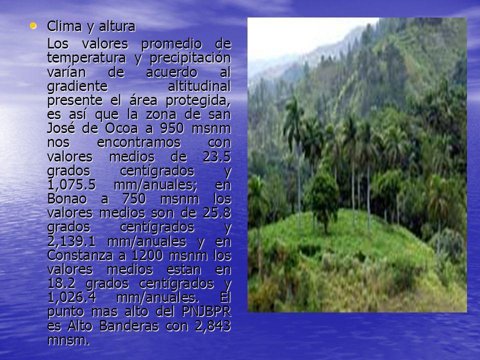 Recursos hídricos Recursos hídricos El PNJBPR cuenta con 472 cabeceras de ríos que nacen dentro y forman parte de las cuencas de los Ríos Nizao, La Cueva, Ocoa, Grande del Medio, Yuna y algunos afluentes del Rio Yaque del Note, aportando de forma directa sus caudales a 6 de las principales presas del país: la Presa de Sabana Yegua, Presa de Hatillo, Presa de Rio Blanco y el complejo hidroeléctrico del Rio Nizao que incluye las Presas de Higuey, Aguacate y el Contraembalse Las Barias.