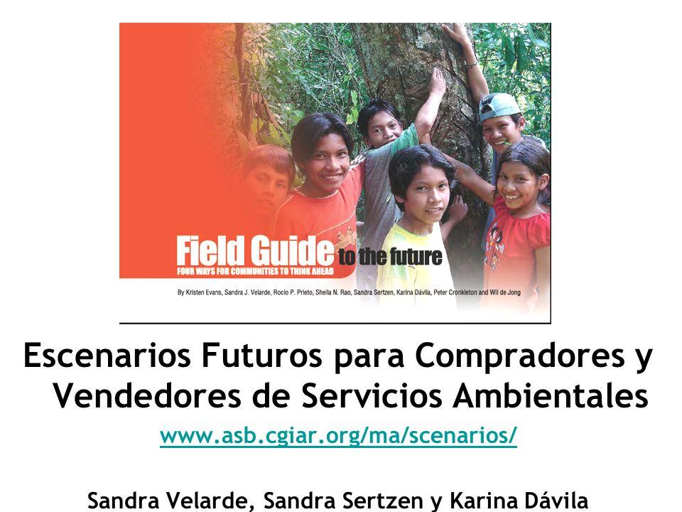 Escenarios Futuros para Compradores y Vendedores de Servicios Ambientales www.asb.cgiar.org/ma/scenarios/ Sandra Velarde, Sandra Sertzen y Karina Dávi