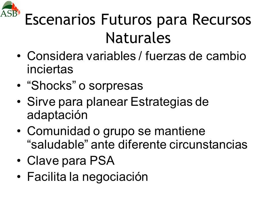 Escenarios Futuros para Recursos Naturales Considera variables / fuerzas de cambio inciertas Shocks o sorpresas Sirve para planear Estrategias de adap