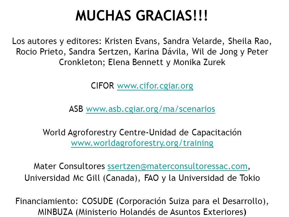 MUCHAS GRACIAS!!! Los autores y editores: Kristen Evans, Sandra Velarde, Sheila Rao, Rocio Prieto, Sandra Sertzen, Karina Dávila, Wil de Jong y Peter