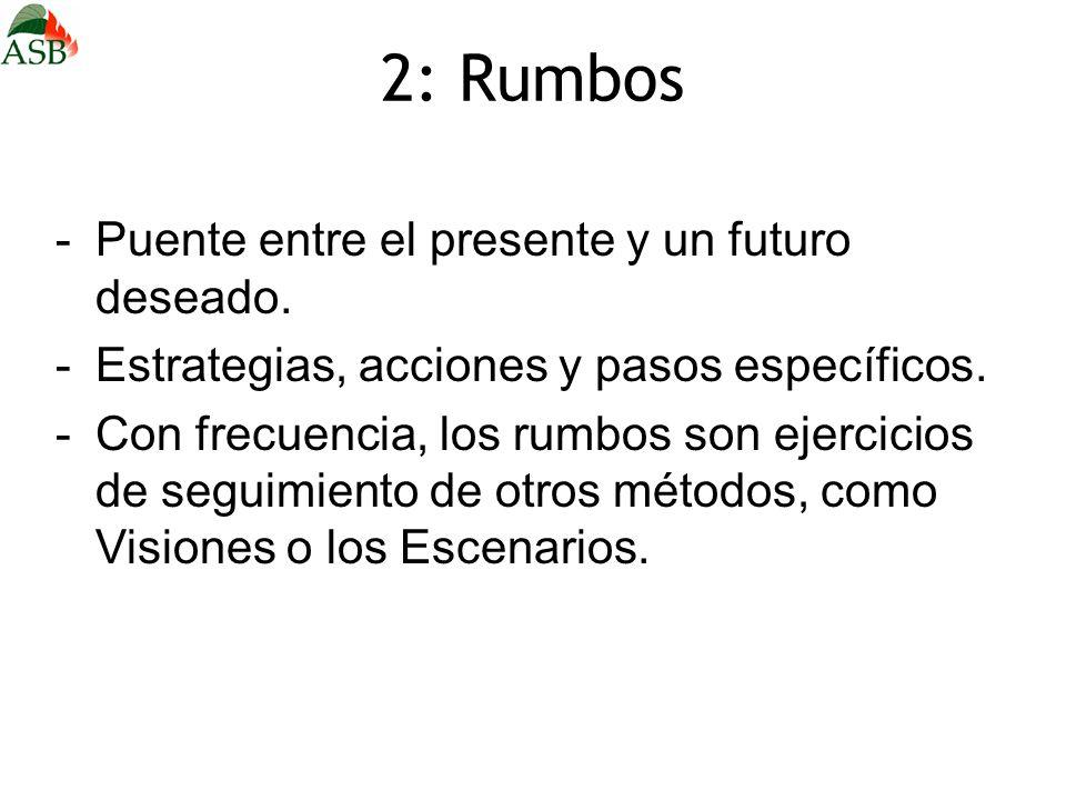 2: Rumbos -Puente entre el presente y un futuro deseado. -Estrategias, acciones y pasos específicos. -Con frecuencia, los rumbos son ejercicios de seg