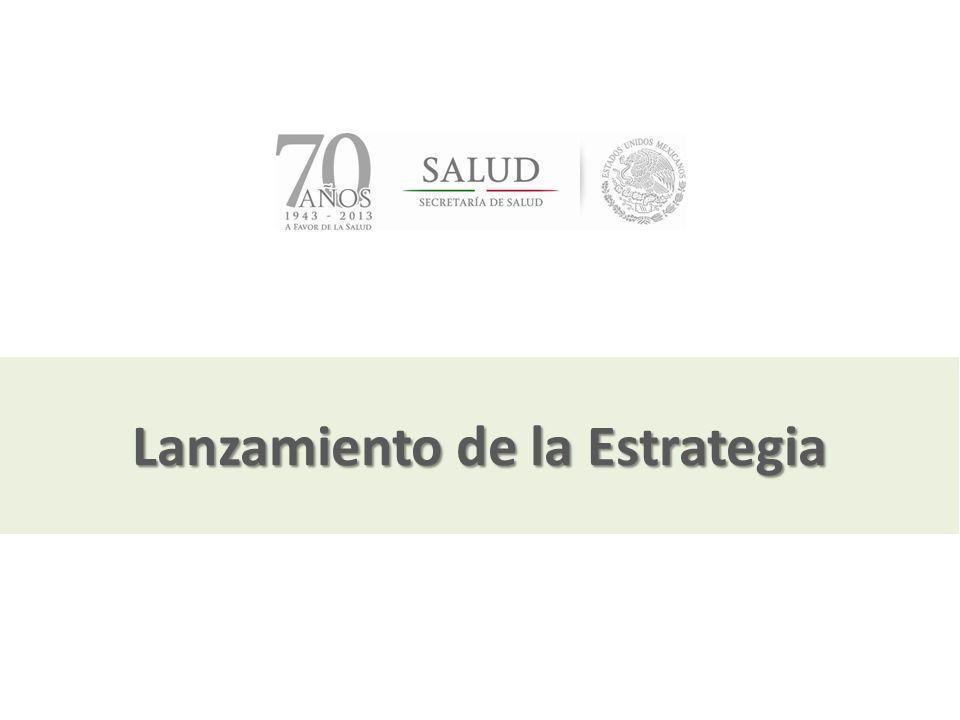 Julio, 2013 Lanzamiento de la Estrategia