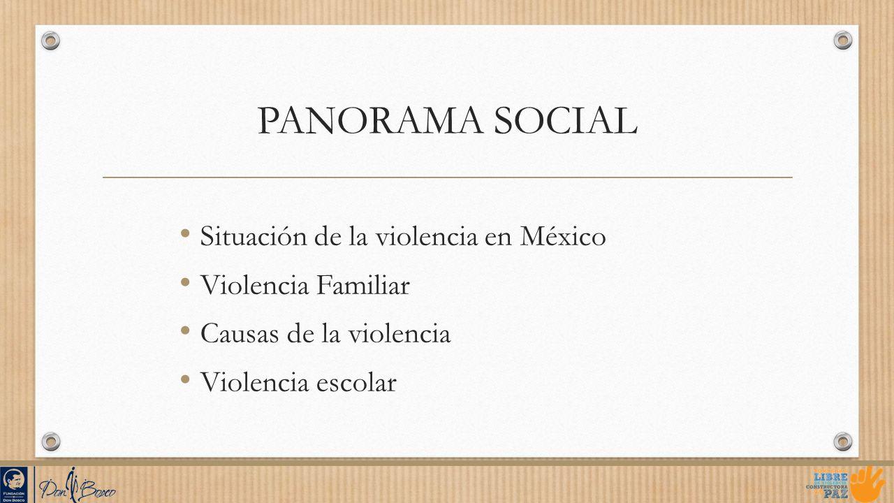 PANORAMA SOCIAL Situación de la violencia en México Violencia Familiar Causas de la violencia Violencia escolar