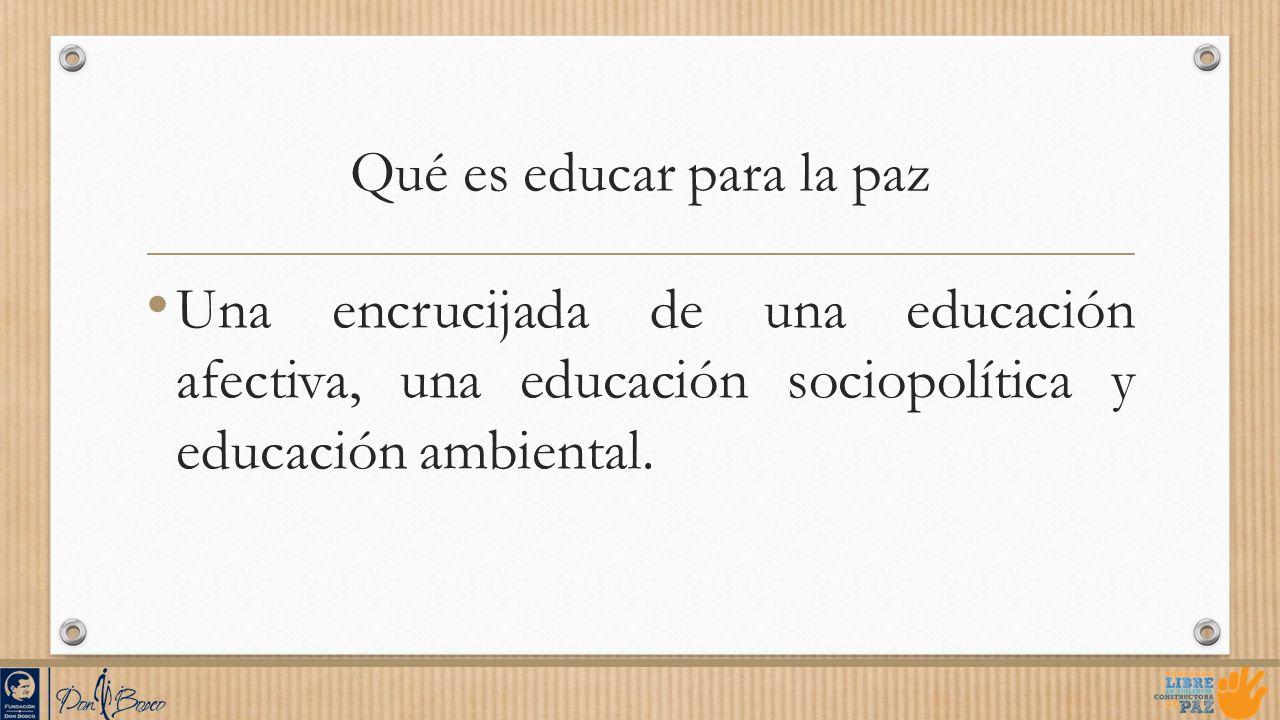 Qué es educar para la paz Una encrucijada de una educación afectiva, una educación sociopolítica y educación ambiental.