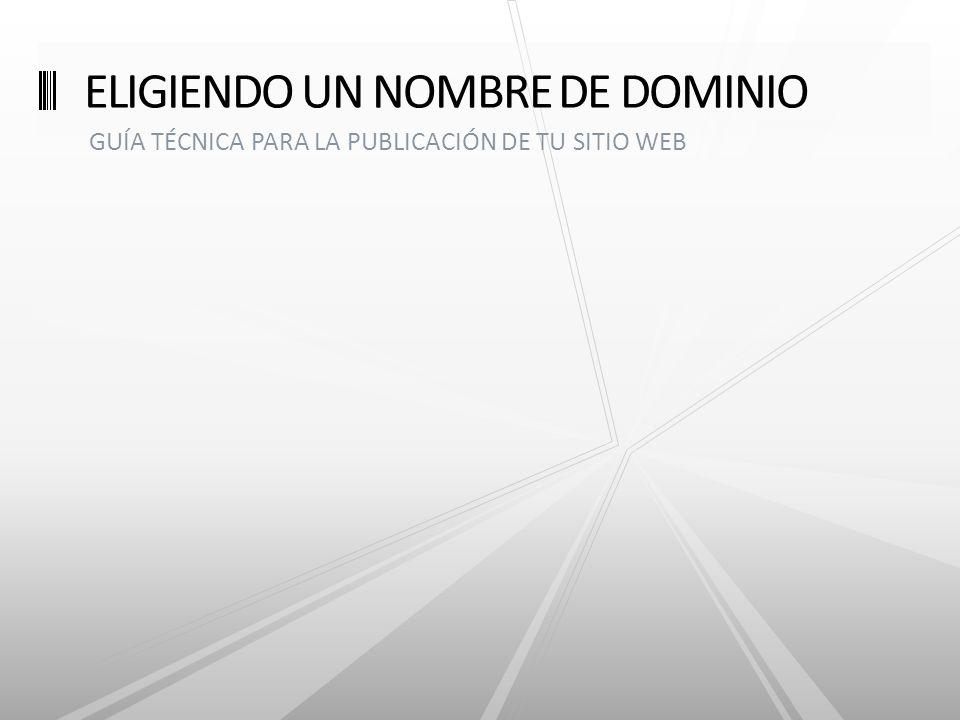 GUÍA TÉCNICA PARA LA PUBLICACIÓN DE TU SITIO WEB ELIGIENDO UN NOMBRE DE DOMINIO