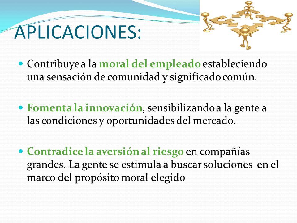 APLICACIONES: Contribuye a la moral del empleado estableciendo una sensación de comunidad y significado común. Fomenta la innovación, sensibilizando a