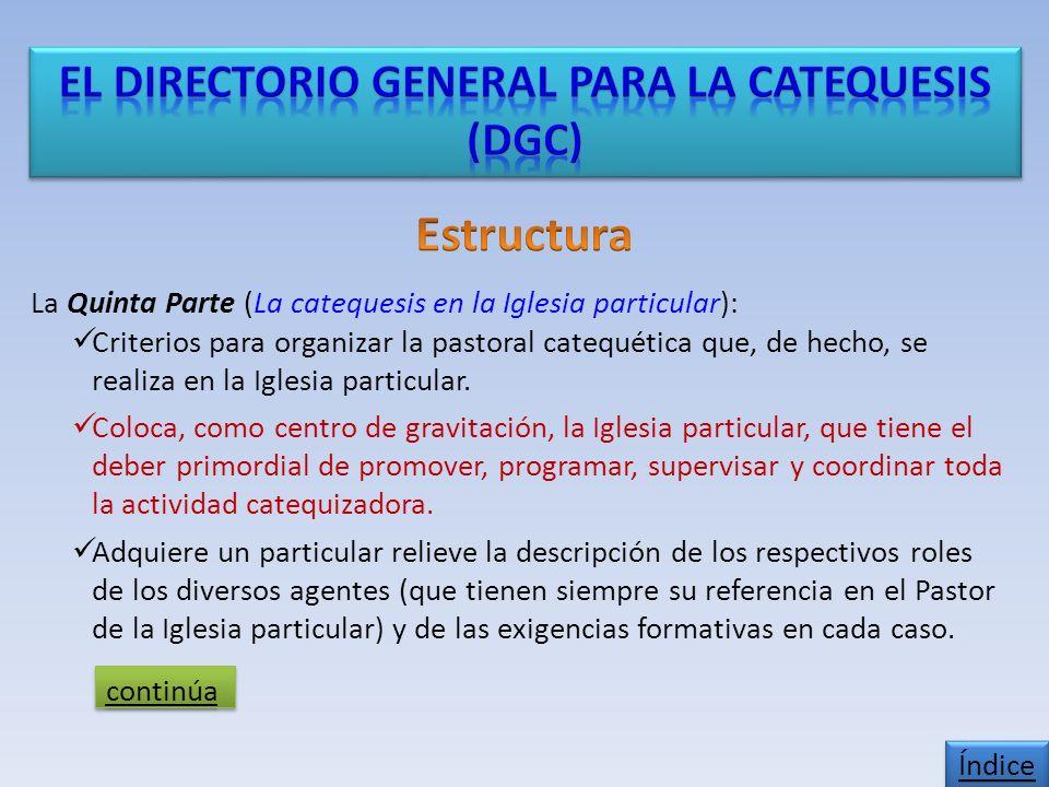 La Quinta Parte (La catequesis en la Iglesia particular): Criterios para organizar la pastoral catequética que, de hecho, se realiza en la Iglesia particular.