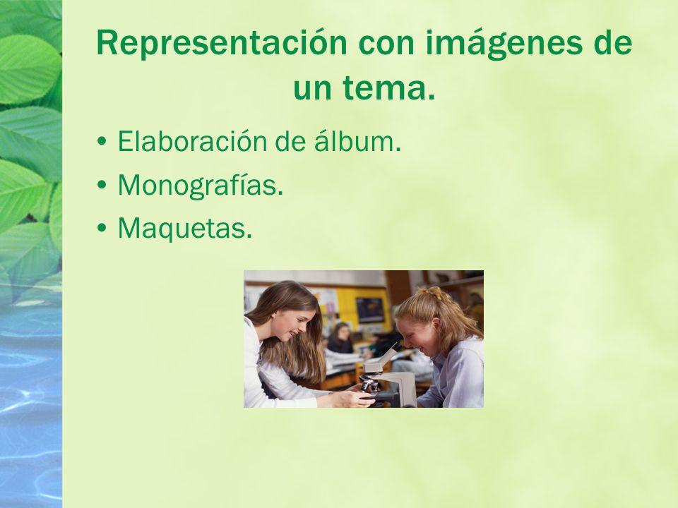Representación con imágenes de un tema. Elaboración de álbum. Monografías. Maquetas.
